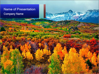 Forest During Autumn Season PowerPoint Template
