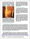 0000089290 Word Template - Page 4