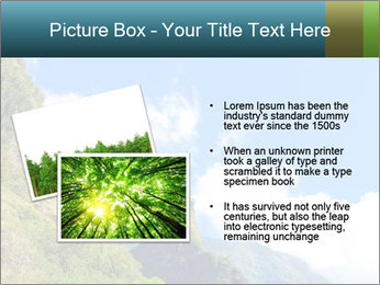 Pure Natural Landscape PowerPoint Template - Slide 20