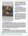 0000089299 Word Templates - Page 4