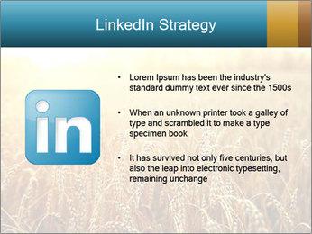 Golden Field PowerPoint Template - Slide 12