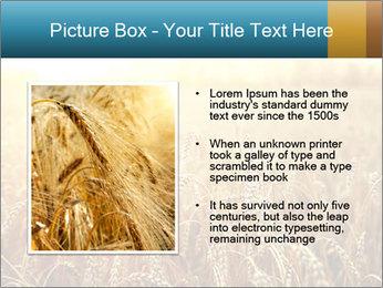 Golden Field PowerPoint Template - Slide 13