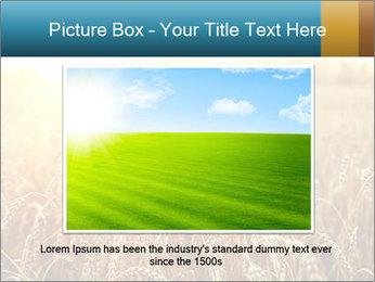 Golden Field PowerPoint Template - Slide 16
