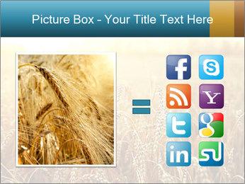 Golden Field PowerPoint Template - Slide 21
