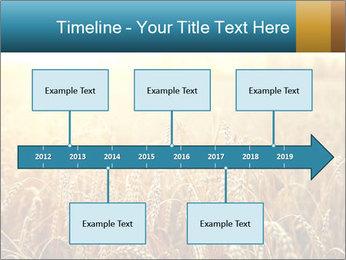 Golden Field PowerPoint Template - Slide 28