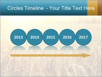 Golden Field PowerPoint Template - Slide 29
