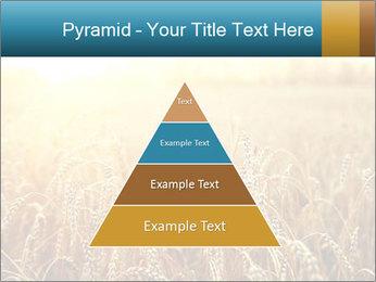 Golden Field PowerPoint Template - Slide 30