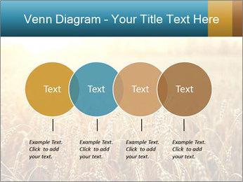 Golden Field PowerPoint Template - Slide 32