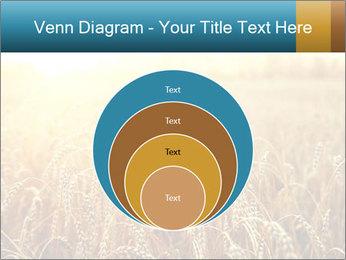 Golden Field PowerPoint Template - Slide 34