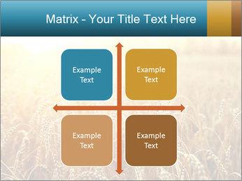 Golden Field PowerPoint Template - Slide 37