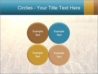 Golden Field PowerPoint Template - Slide 38
