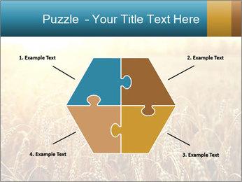 Golden Field PowerPoint Template - Slide 40