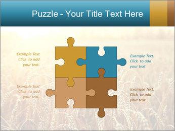 Golden Field PowerPoint Template - Slide 43