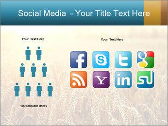 Golden Field PowerPoint Template - Slide 5