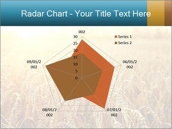 Golden Field PowerPoint Template - Slide 51