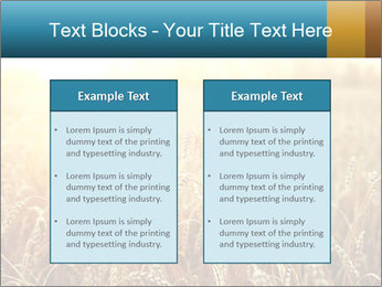Golden Field PowerPoint Template - Slide 57