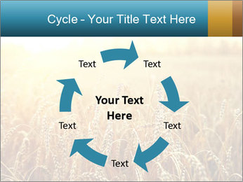 Golden Field PowerPoint Template - Slide 62