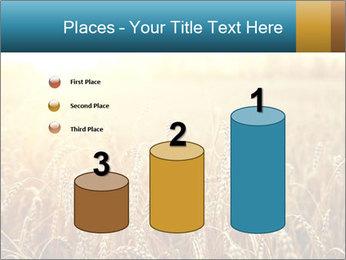 Golden Field PowerPoint Template - Slide 65