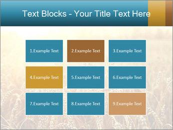 Golden Field PowerPoint Template - Slide 68