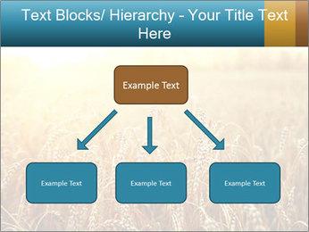 Golden Field PowerPoint Template - Slide 69