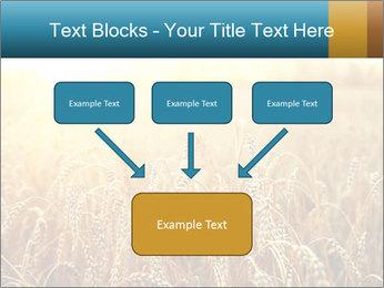 Golden Field PowerPoint Template - Slide 70