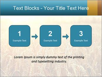 Golden Field PowerPoint Template - Slide 71