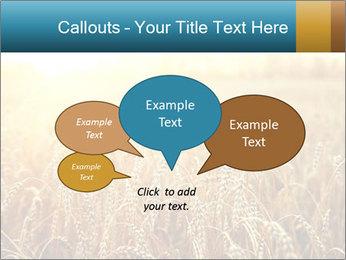 Golden Field PowerPoint Template - Slide 73