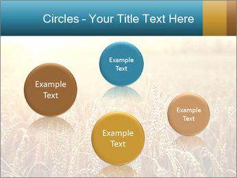 Golden Field PowerPoint Template - Slide 77