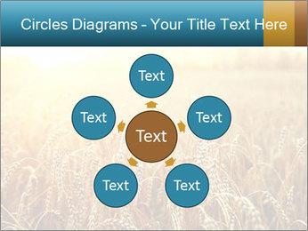 Golden Field PowerPoint Template - Slide 78