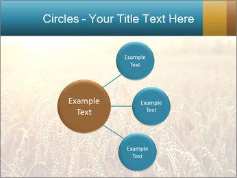 Golden Field PowerPoint Template - Slide 79