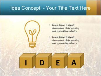 Golden Field PowerPoint Template - Slide 80