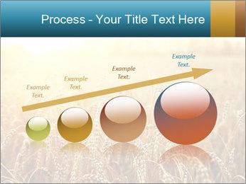 Golden Field PowerPoint Template - Slide 87