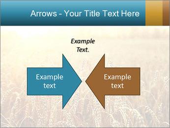 Golden Field PowerPoint Template - Slide 90