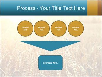 Golden Field PowerPoint Template - Slide 93