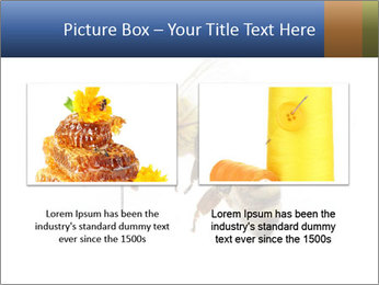 Bee On White Background PowerPoint Templates - Slide 18