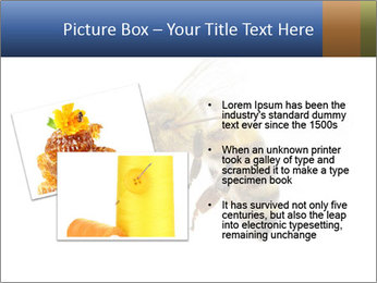 Bee On White Background PowerPoint Templates - Slide 20