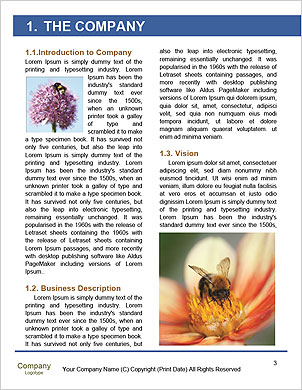 0000089308 Word Template - Page 3