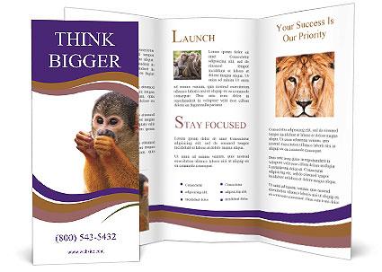 0000089312 Brochure Templates