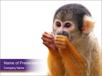 African Monkey PowerPoint Template - Slide 1