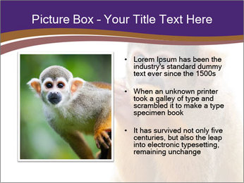African Monkey PowerPoint Template - Slide 13