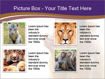 African Monkey PowerPoint Template - Slide 14