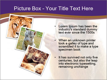 African Monkey PowerPoint Template - Slide 17