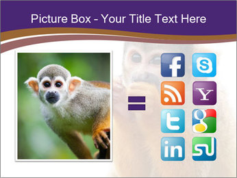 African Monkey PowerPoint Template - Slide 21