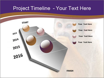 African Monkey PowerPoint Template - Slide 26