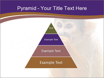 African Monkey PowerPoint Template - Slide 30