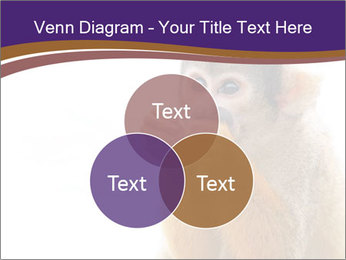African Monkey PowerPoint Template - Slide 33