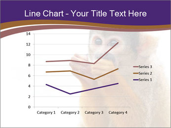 African Monkey PowerPoint Template - Slide 54