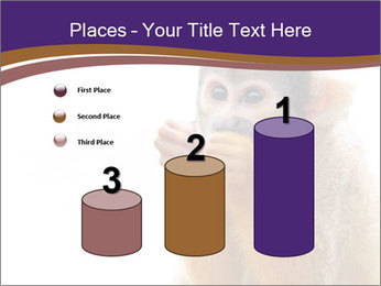 African Monkey PowerPoint Templates - Slide 65
