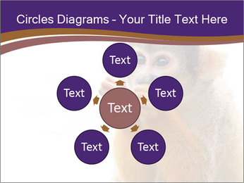 African Monkey PowerPoint Template - Slide 78