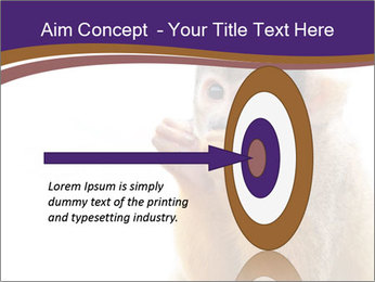 African Monkey PowerPoint Template - Slide 83